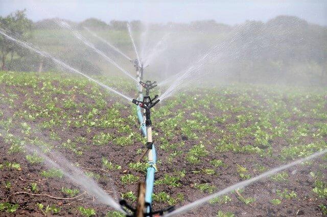 Análises de água de rega para GlobalGAP